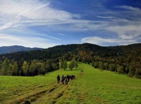 Zaproszenie na XIII Bieszczadzki Rajd 7-10 października